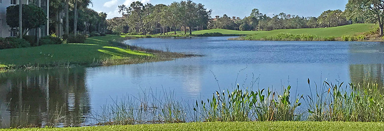 Pelican Sound Golf & River Club  Homes For Sale | Estero Florida